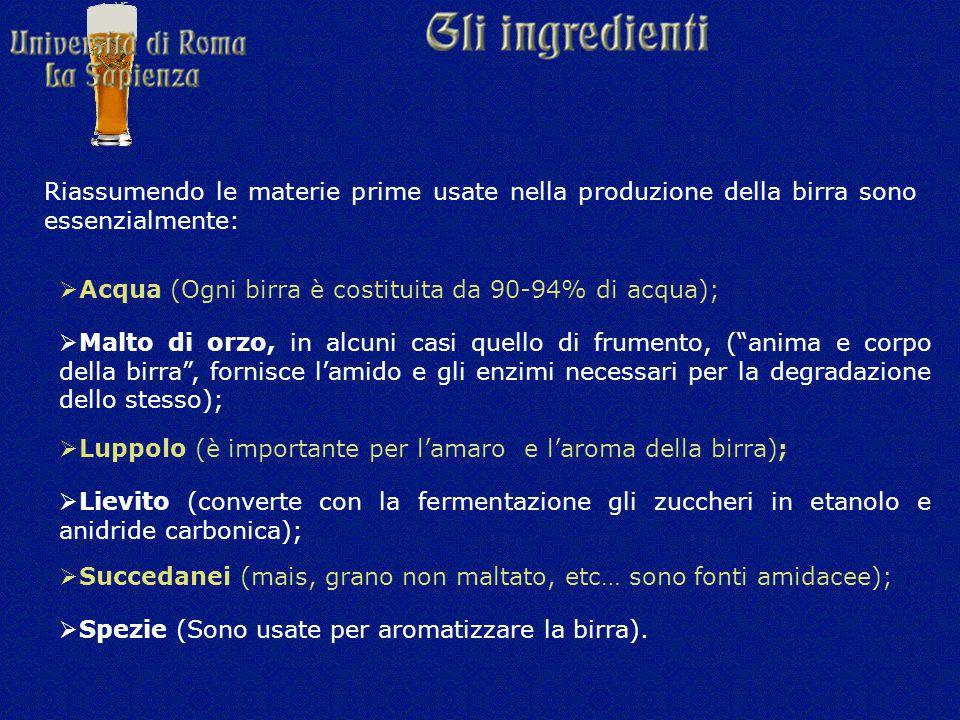 Riassumendo le materie prime usate nella produzione della birra sono essenzialmente:  Acqua (Ogni birra è costituita da 90-94% di acqua);  Malto di orzo, in alcuni casi quello di frumento, ( anima e corpo della birra , fornisce l'amido e gli enzimi necessari per la degradazione dello stesso);  Luppolo (è importante per l'amaro e l'aroma della birra);  Lievito (converte con la fermentazione gli zuccheri in etanolo e anidride carbonica);  Succedanei (mais, grano non maltato, etc… sono fonti amidacee);  Spezie (Sono usate per aromatizzare la birra).