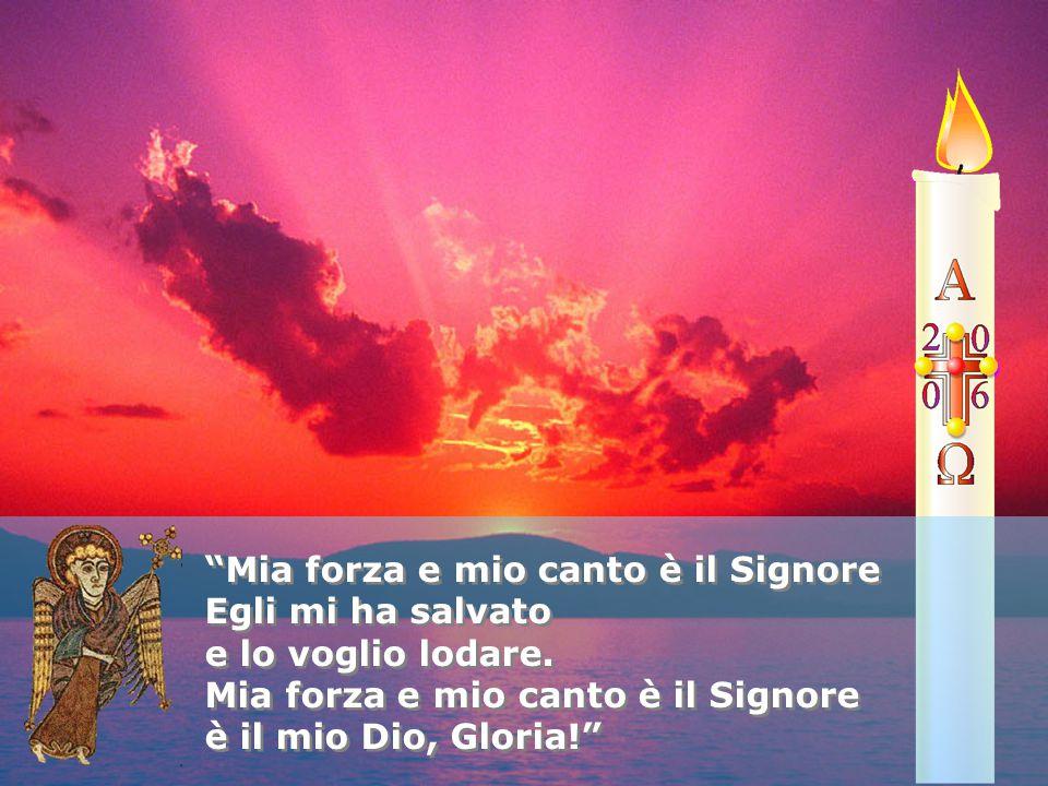 """""""Mia forza e mio canto è il Signore Egli mi ha salvato e lo voglio lodare. Mia forza e mio canto è il Signore è il mio Dio, Gloria!"""" """"Mia forza e mio"""