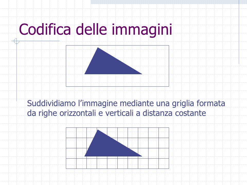 Codifica delle immagini Suddividiamo l'immagine mediante una griglia formata da righe orizzontali e verticali a distanza costante
