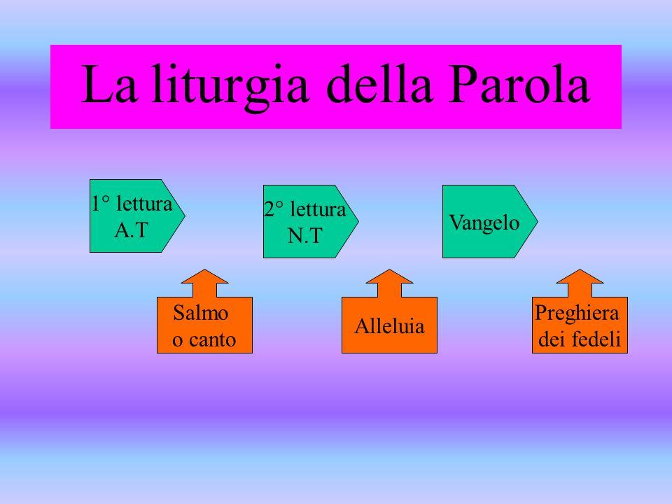 La liturgia della Parola 1° lettura A.T 2° lettura N.T Vangelo Salmo o canto Alleluia Preghiera dei fedeli