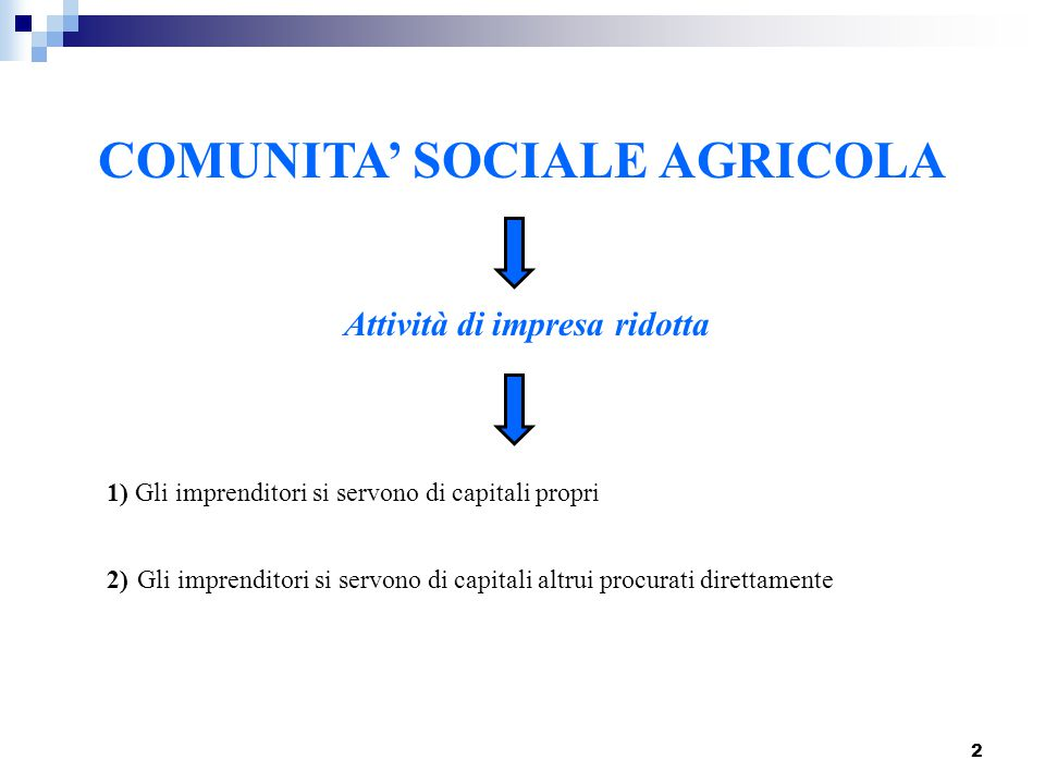 2 COMUNITA' SOCIALE AGRICOLA Attività di impresa ridotta 1) Gli imprenditori si servono di capitali propri 2) G li imprenditori si servono di capitali
