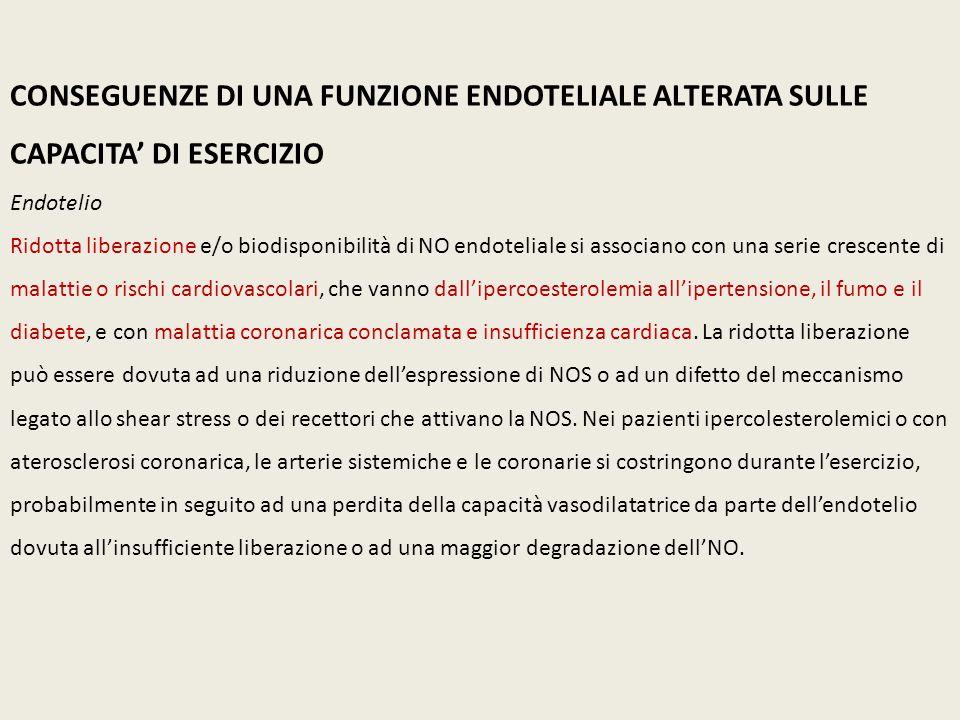 CONSEGUENZE DI UNA FUNZIONE ENDOTELIALE ALTERATA SULLE CAPACITA' DI ESERCIZIO Endotelio Ridotta liberazione e/o biodisponibilità di NO endoteliale si