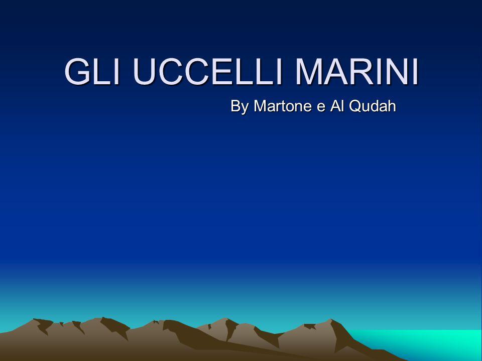 GLI UCCELLI MARINI By Martone e Al Qudah