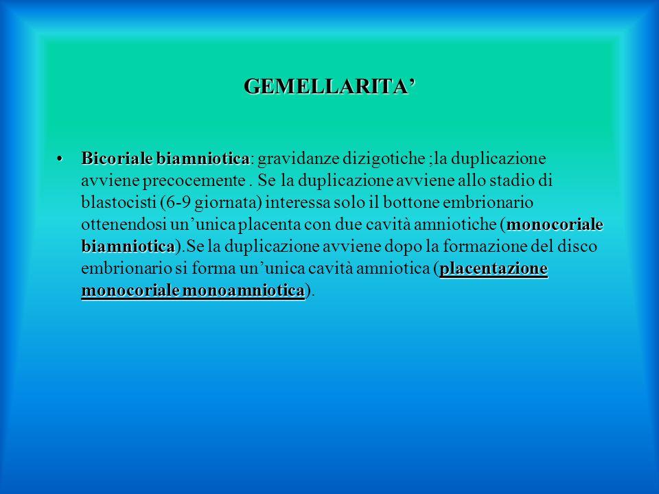 GEMELLARITA' Bicoriale biamniotica monocoriale biamniotica placentazione monocoriale monoamnioticaBicoriale biamniotica: gravidanze dizigotiche ;la duplicazione avviene precocemente.
