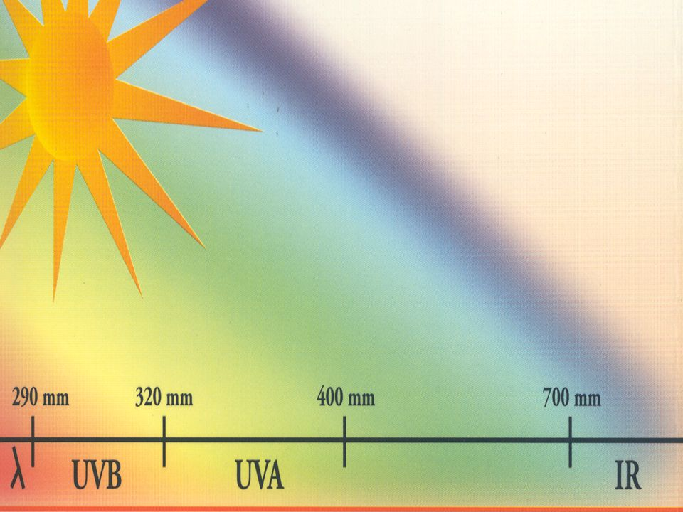 La fotoprotezione naturale della cute verso le radiazioni è assicurata: a) dallo spessore del corneo a) dallo spessore del corneo b) dal contenuto di melanine b) dal contenuto di melanine e dal tipo di pigmentazione e dal tipo di pigmentazione c) numerosi sistemi di protezione