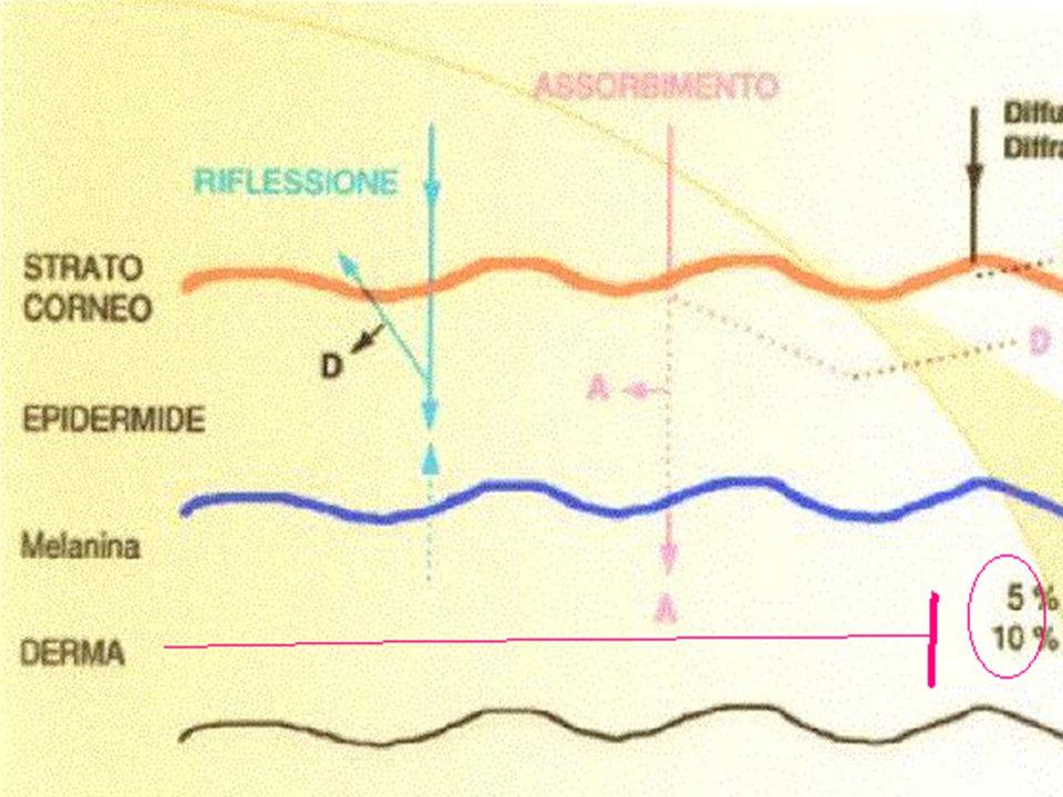 mutazioni del gene p53 cute danneggiata dal sole 38,5% cute danneggiata dal sole 38,5% cute normale 14% cute normale 14% elevata incidenza elevata incidenza - cheratosi attinica 54% - cheratosi attinica 54% - carcinoma squamocellulare 69% - carcinoma squamocellulare 69% Einspahr Jg et al.