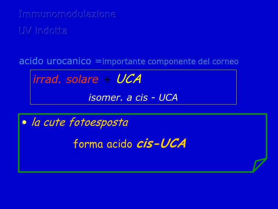 irrad.solare + UCA isomer.