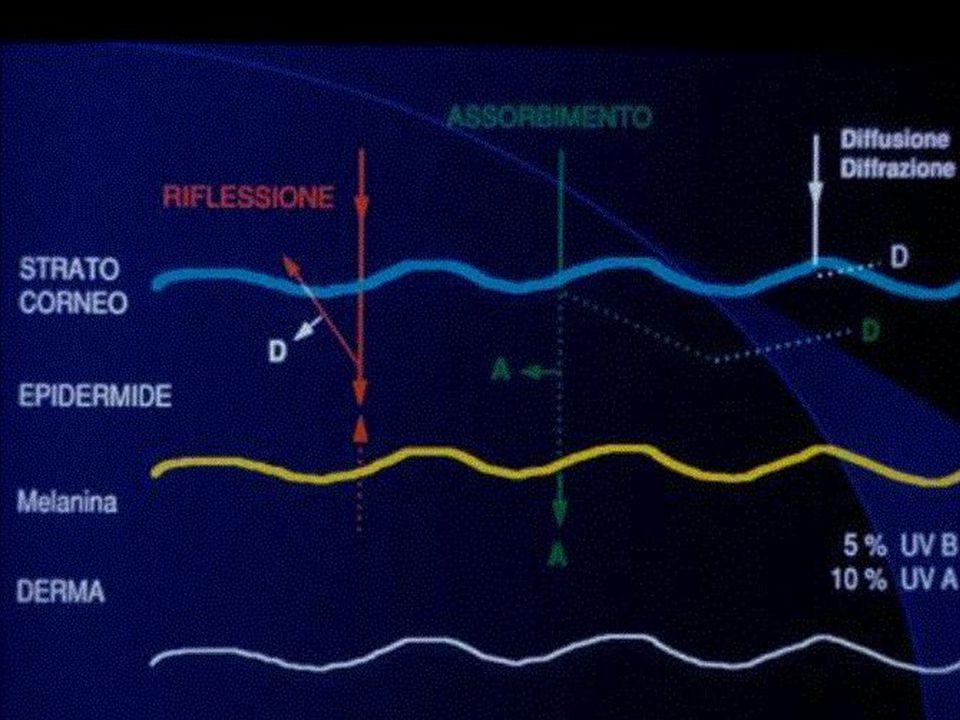 irradiazione irradiazione intensa e prolungata alterazione intensa e prolungata alterazione down-regulation della apoptosi * down-regulation della apoptosi * CD 95 (Fas) CD 95 (Fas) *Bachmann F.