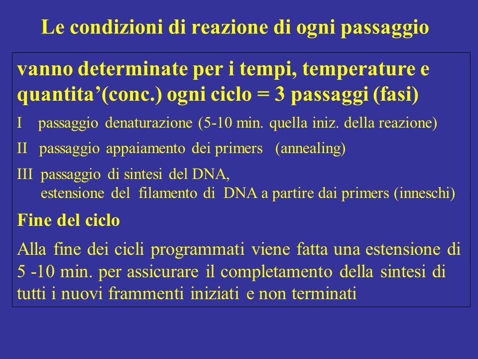 vanno determinate per i tempi, temperature e quantita'(conc.) ogni ciclo = 3 passaggi (fasi) I passaggio denaturazione (5-10 min. quella iniz. della r