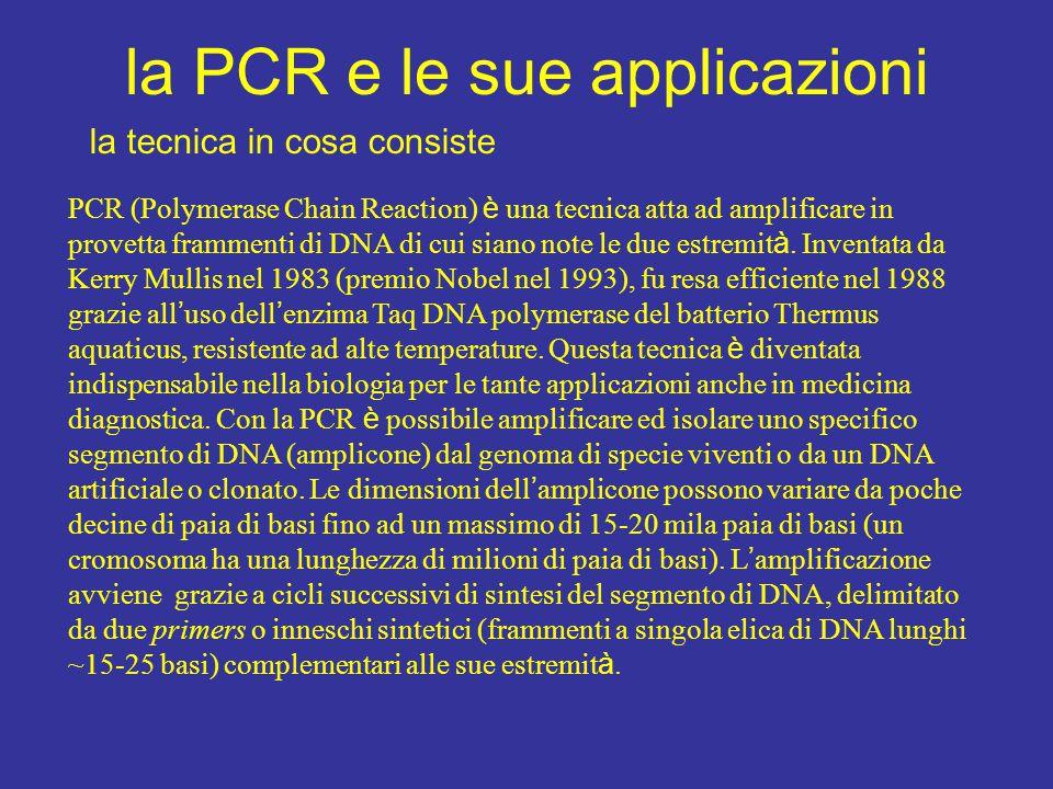 la PCR e le sue applicazioni la tecnica in cosa consiste PCR (Polymerase Chain Reaction) è una tecnica atta ad amplificare in provetta frammenti di DN