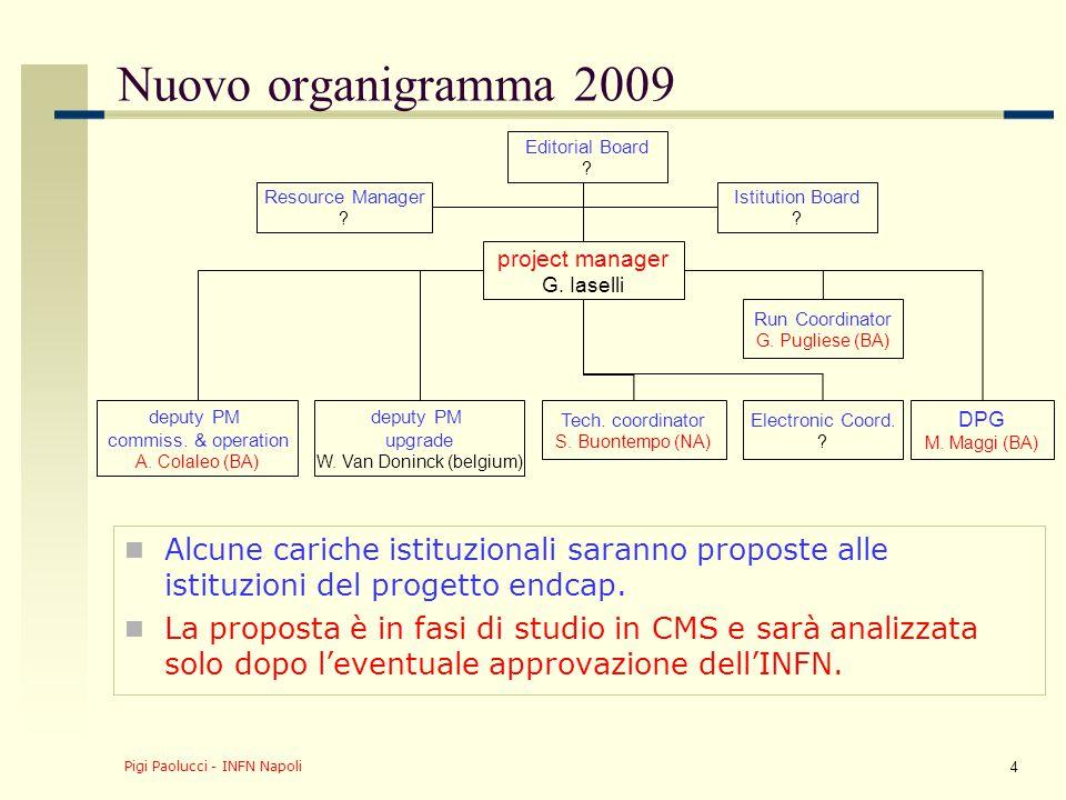 Pigi Paolucci - INFN Napoli 4 Nuovo organigramma 2009 Alcune cariche istituzionali saranno proposte alle istituzioni del progetto endcap. La proposta