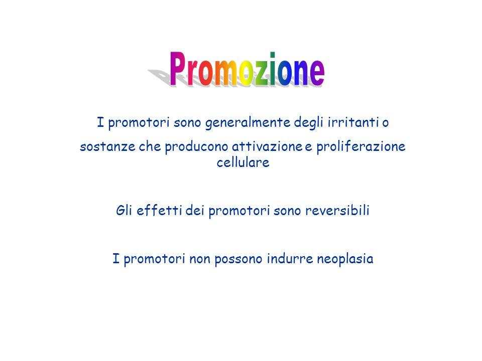 I promotori sono generalmente degli irritanti o sostanze che producono attivazione e proliferazione cellulare Gli effetti dei promotori sono reversibi