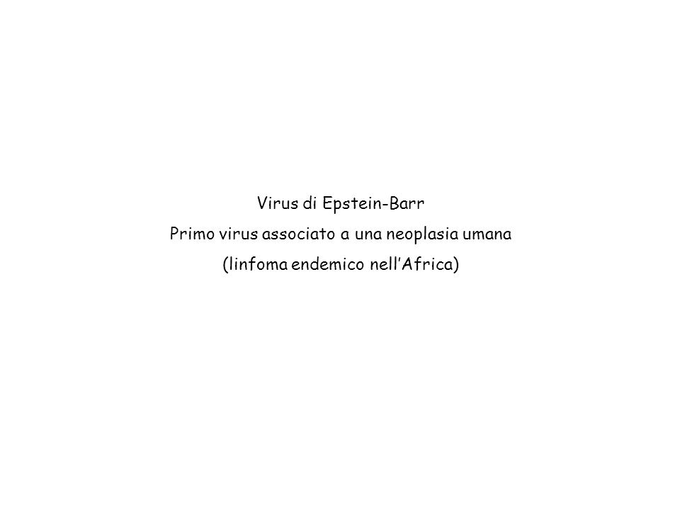 Virus di Epstein-Barr Primo virus associato a una neoplasia umana (linfoma endemico nell'Africa)