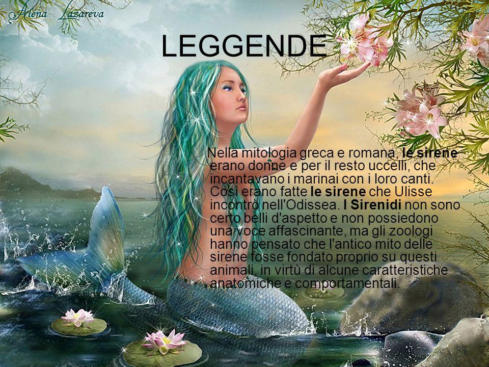 LEGGENDE Nella mitologia greca e romana, le sirene erano donne e per il resto uccelli, che incantavano i marinai con i loro canti.