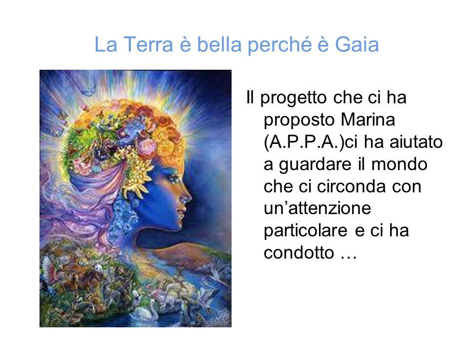 La Terra è bella perché è Gaia Il progetto che ci ha proposto Marina (A.P.P.A.)ci ha aiutato a guardare il mondo che ci circonda con un'attenzione par