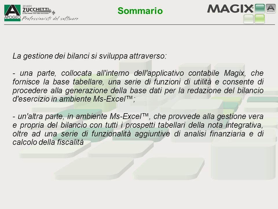 La gestione dei bilanci si sviluppa attraverso: - una parte, collocata all'interno dell'applicativo contabile Magix, che fornisce la base tabellare, u