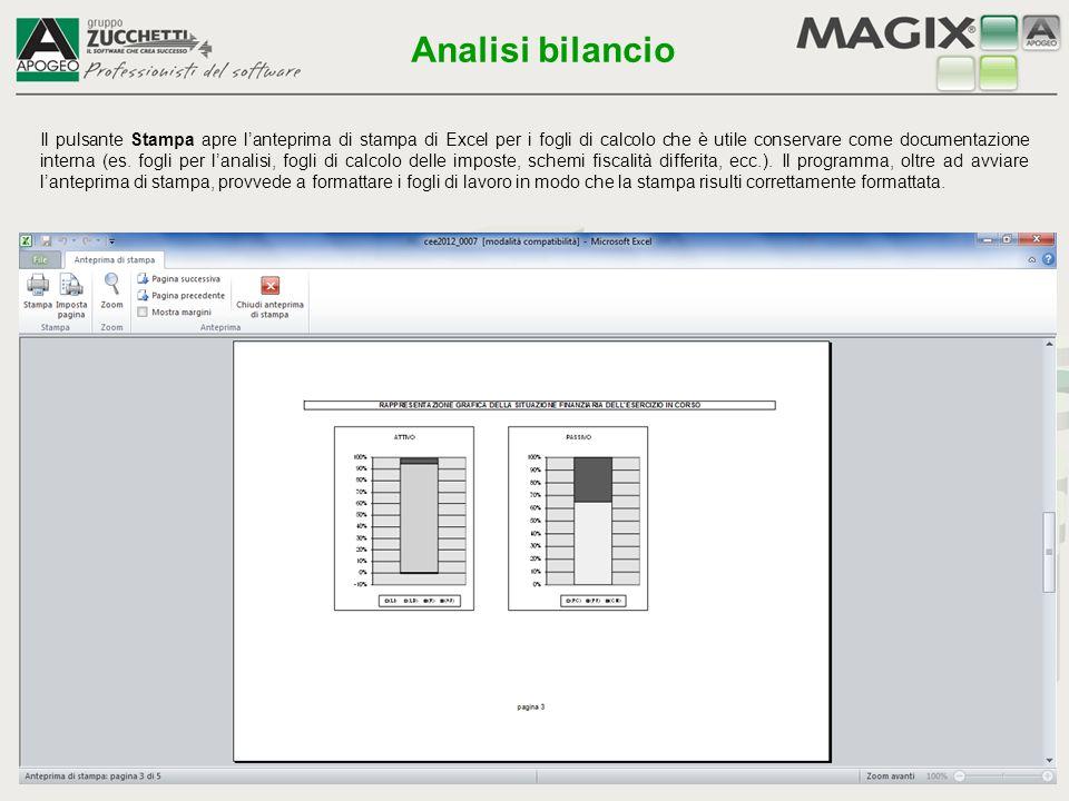 Il pulsante Stampa apre l'anteprima di stampa di Excel per i fogli di calcolo che è utile conservare come documentazione interna (es. fogli per l'anal