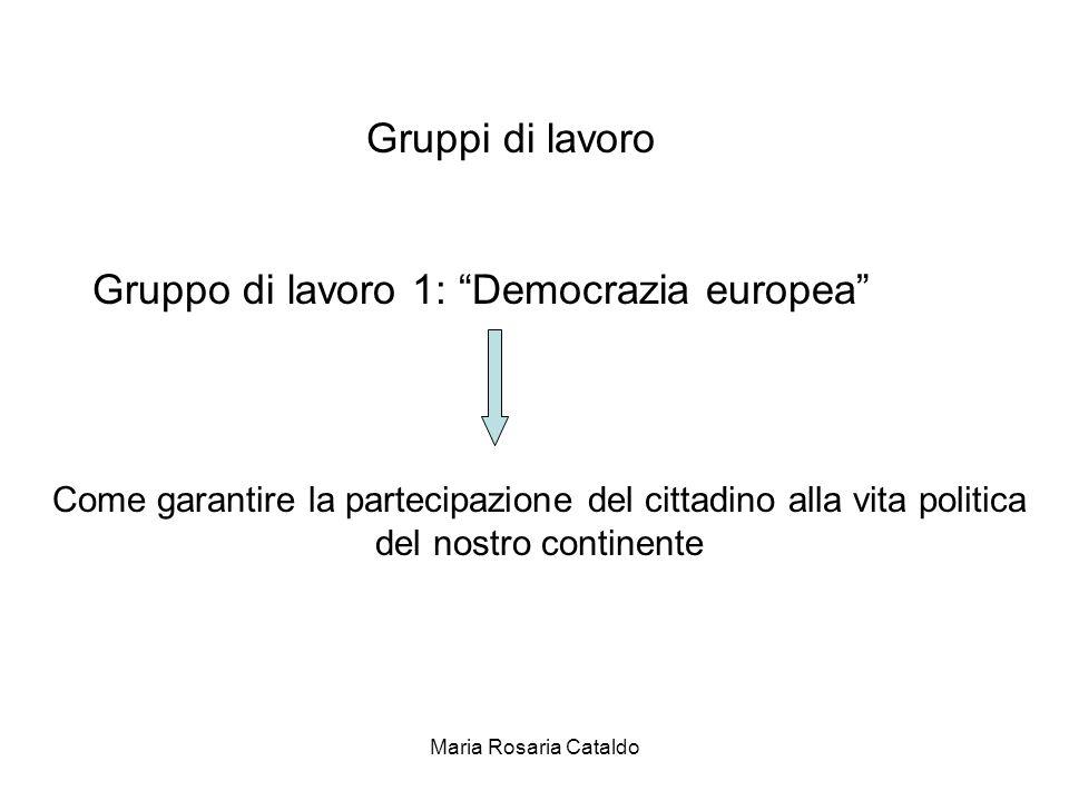 Maria Rosaria Cataldo Gruppi di lavoro Gruppo di lavoro 1: Democrazia europea Come garantire la partecipazione del cittadino alla vita politica del nostro continente