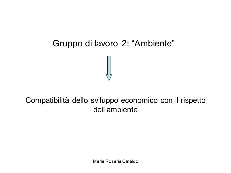 Maria Rosaria Cataldo Gruppo di lavoro 2: Ambiente Compatibilità dello sviluppo economico con il rispetto dell'ambiente