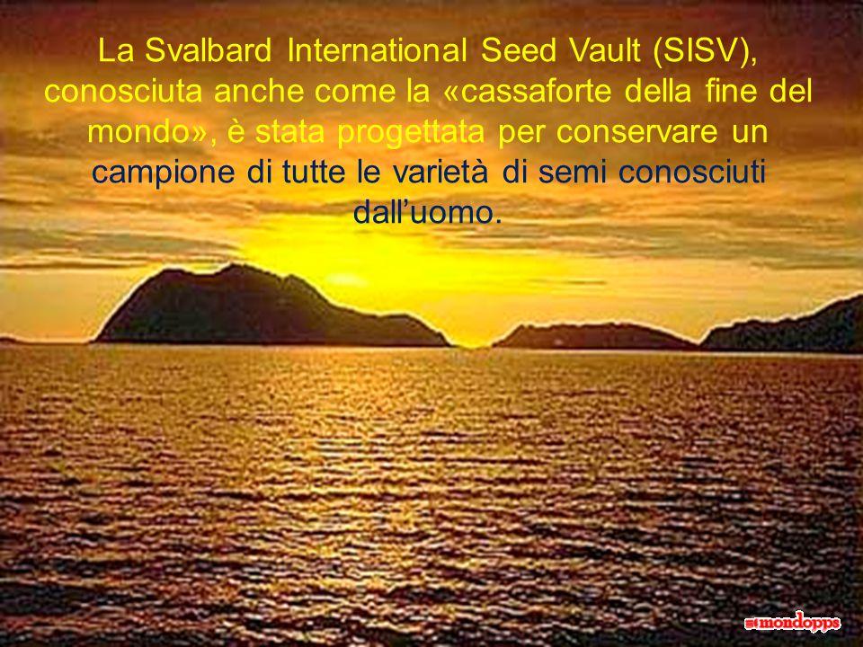 La Svalbard International Seed Vault (SISV), conosciuta anche come la «cassaforte della fine del mondo», è stata progettata per conservare un campione di tutte le varietà di semi conosciuti dall'uomo.