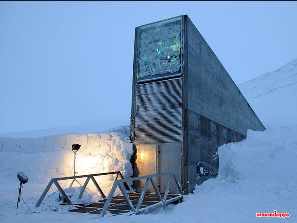 La Svalbard International Seed Vault (SISV), conosciuta anche come la «cassaforte della fine del mondo», è stata progettata per conservare un campione