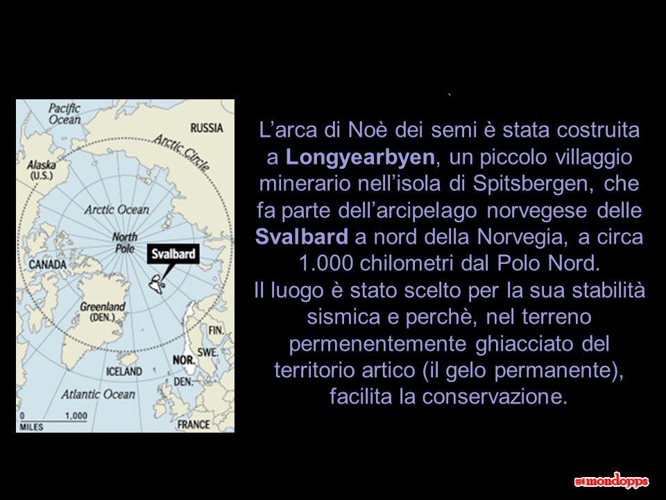 L'arca di Noè dei semi è stata costruita a Longyearbyen, un piccolo villaggio minerario nell'isola di Spitsbergen, che fa parte dell'arcipelago norvegese delle Svalbard a nord della Norvegia, a circa 1.000 chilometri dal Polo Nord.