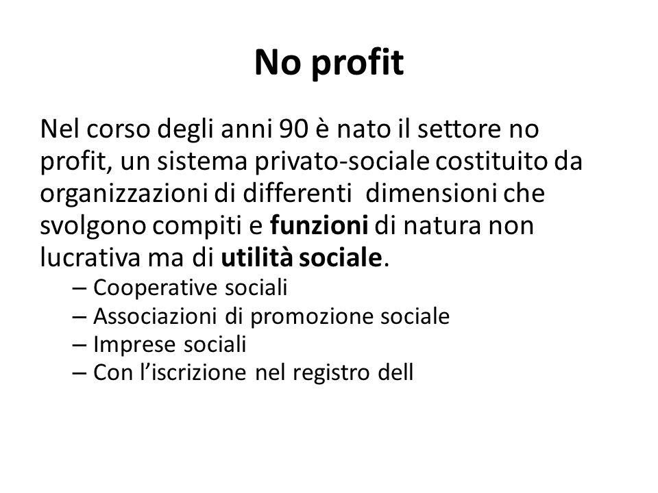 No profit Nel corso degli anni 90 è nato il settore no profit, un sistema privato-sociale costituito da organizzazioni di differenti dimensioni che sv