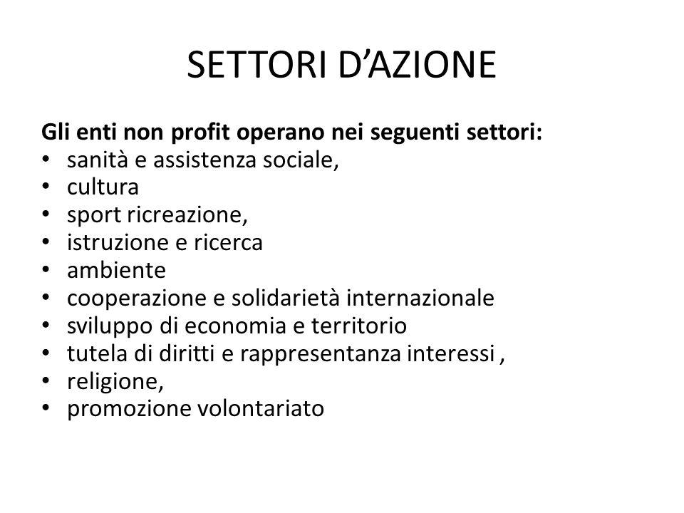 SETTORI D'AZIONE Gli enti non profit operano nei seguenti settori: sanità e assistenza sociale, cultura sport ricreazione, istruzione e ricerca ambien
