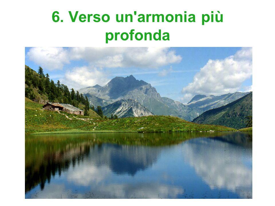 6. Verso un'armonia più profonda