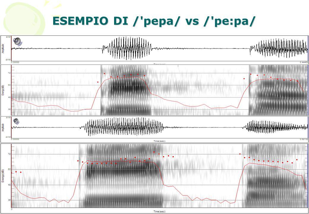 10 ESEMPIO DI /'pepa/ vs /'pe:pa/