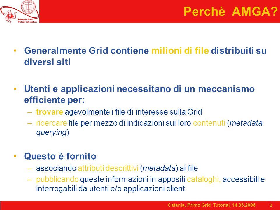 Catania, Primo Grid Tutorial, 14.03.2006 3 Perchè AMGA.