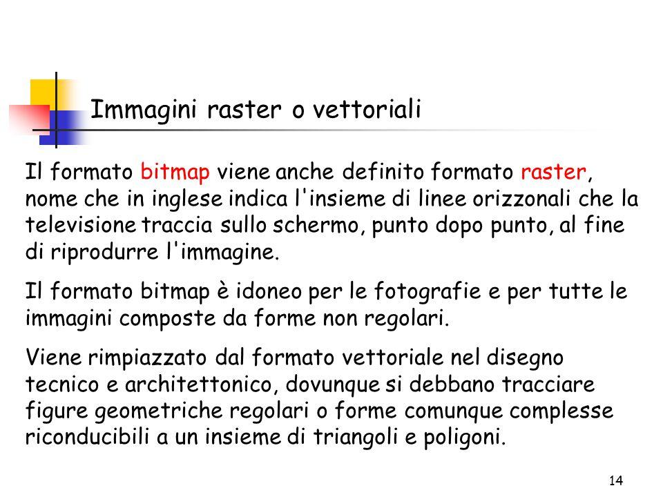 14 Immagini raster o vettoriali Il formato bitmap viene anche definito formato raster, nome che in inglese indica l'insieme di linee orizzonali che la