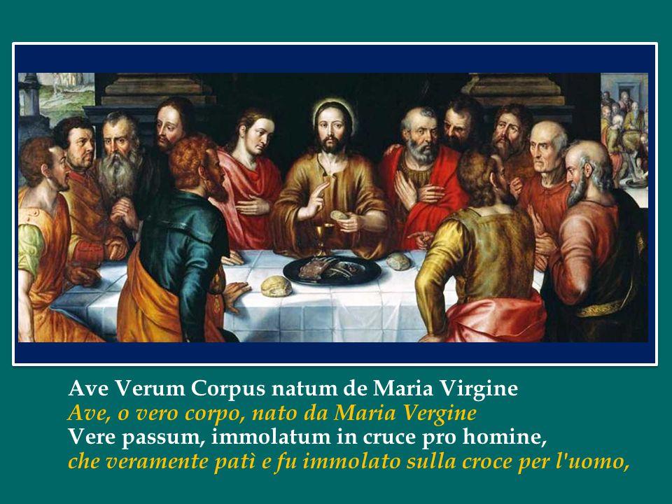 Ave Verum Corpus natum de Maria Virgine Ave, o vero corpo, nato da Maria Vergine Vere passum, immolatum in cruce pro homine, che veramente patì e fu immolato sulla croce per l uomo,