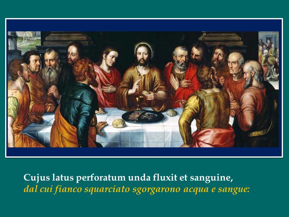 Cujus latus perforatum unda fluxit et sanguine, dal cui fianco squarciato sgorgarono acqua e sangue: