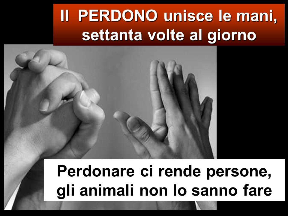 Il PERDONO unisce le mani, settanta volte al giorno Perdonare ci rende persone, gli animali non lo sanno fare
