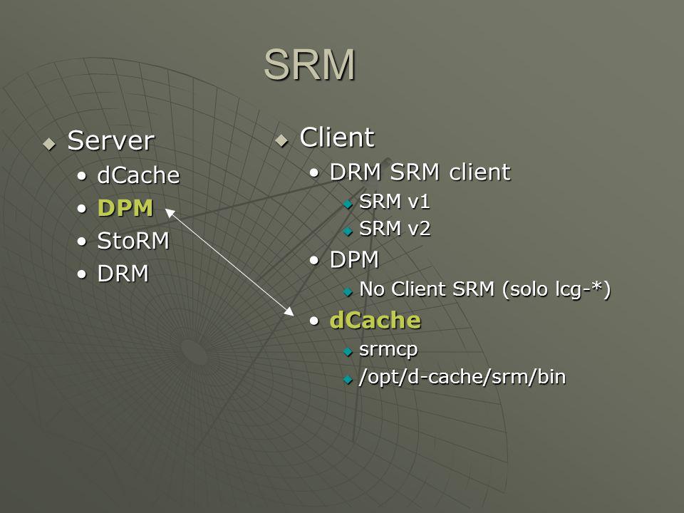 SRM  Server dCachedCache DPMDPM StoRMStoRM DRMDRM  Client DRM SRM client  SRM v1  SRM v2 DPM  No Client SRM (solo lcg-*) dCache  srmcp  /opt/d-cache/srm/bin