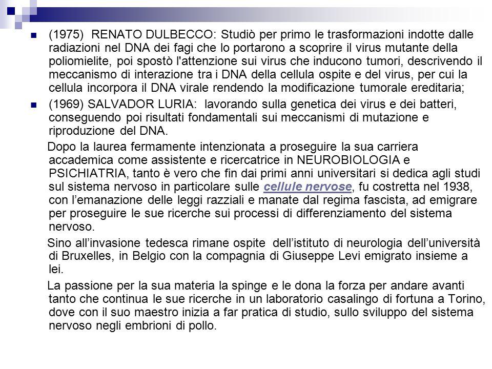 Rita Levi Montalcini Rita Levi Montalcini è nata a Torino il 22 Aprile 1909. Figlia di un ingegnere e di una pittrice, Rita decide all'età di vent'ann
