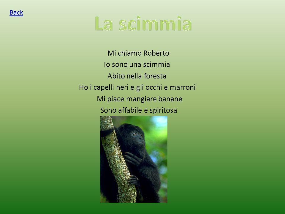 Mi chiamo Roberto Io sono una scimmia Abito nella foresta Ho i capelli neri e gli occhi e marroni Mi piace mangiare banane Sono affabile e spiritosa Back