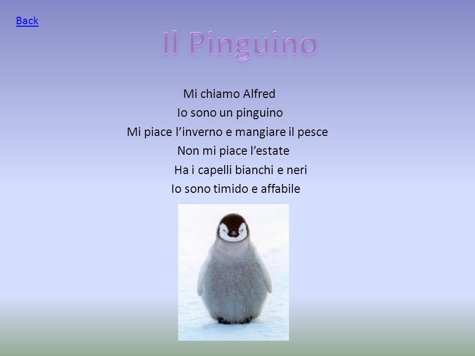 Mi chiamo Alfred Io sono un pinguino Mi piace l'inverno e mangiare il pesce Non mi piace l'estate Ha i capelli bianchi e neri Io sono timido e affabile Back