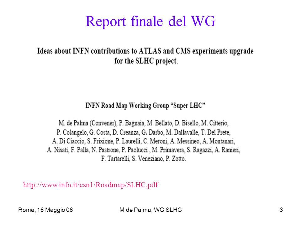 Roma, 16 Maggio 06M de Palma, WG SLHC4 Scala dei tempi I tempi assunti dal WG:  2007-2008 Programma generale di R&D.