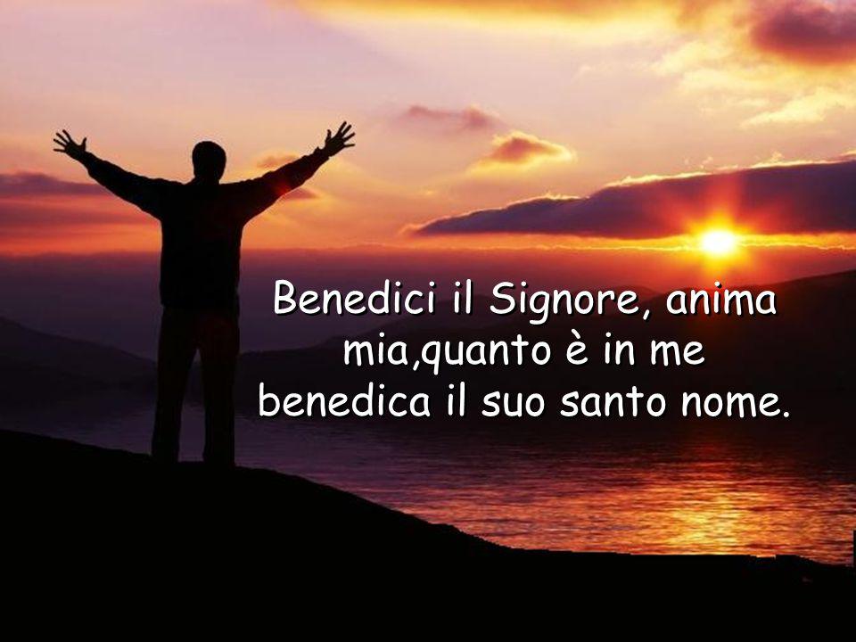 Benedici il Signore, anima mia,quanto è in me benedica il suo santo nome.
