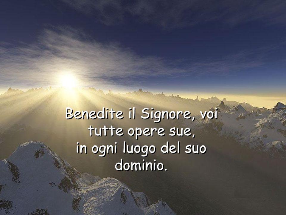 Benedite il Signore, voi tutte, sue schiere, suoi ministri, che fate il suo volere. Benedite il Signore, voi tutte, sue schiere, suoi ministri, che fa
