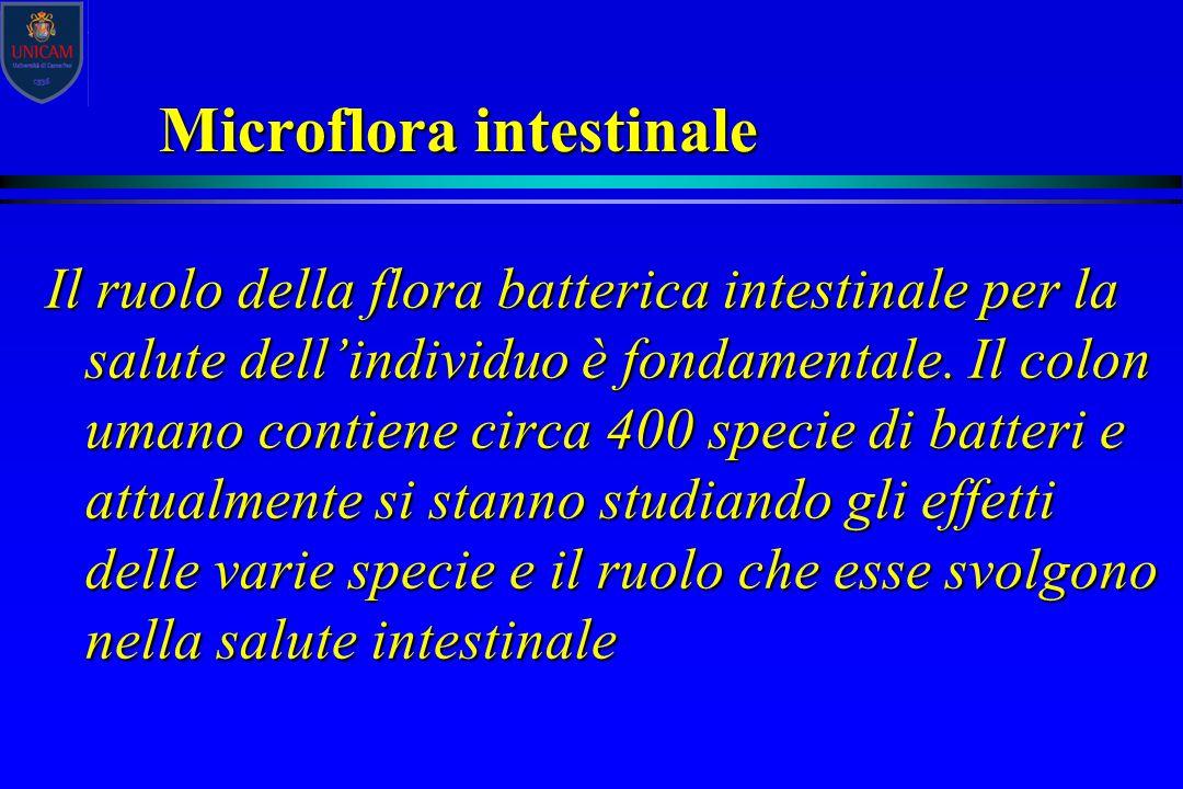 Microflora intestinale Il ruolo della flora batterica intestinale per la salute dell'individuo è fondamentale. Il colon umano contiene circa 400 speci