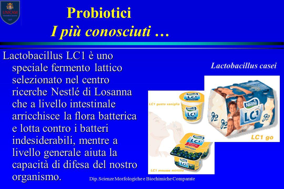 Dip.Scienze Morfologiche e Biochimiche Comparate Probiotici I più conosciuti … Lactobacillus LC1 è uno speciale fermento lattico selezionato nel centr