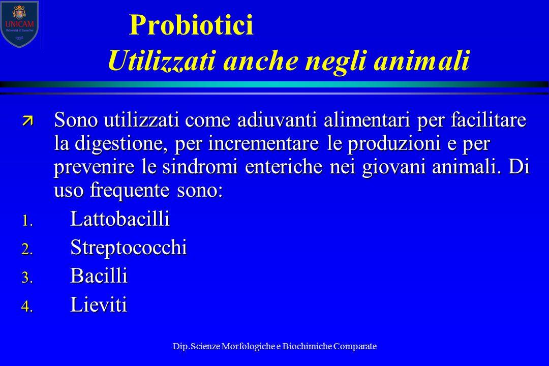 Dip.Scienze Morfologiche e Biochimiche Comparate Probiotici Utilizzati anche negli animali ä Sono utilizzati come adiuvanti alimentari per facilitare