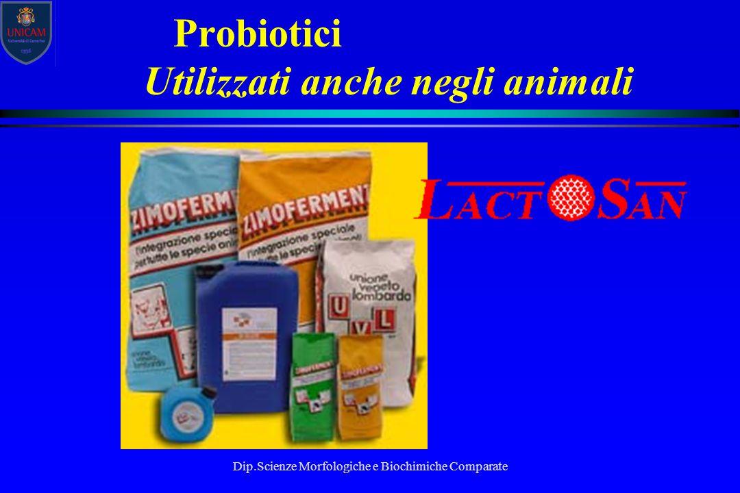 Dip.Scienze Morfologiche e Biochimiche Comparate Probiotici Utilizzati anche negli animali