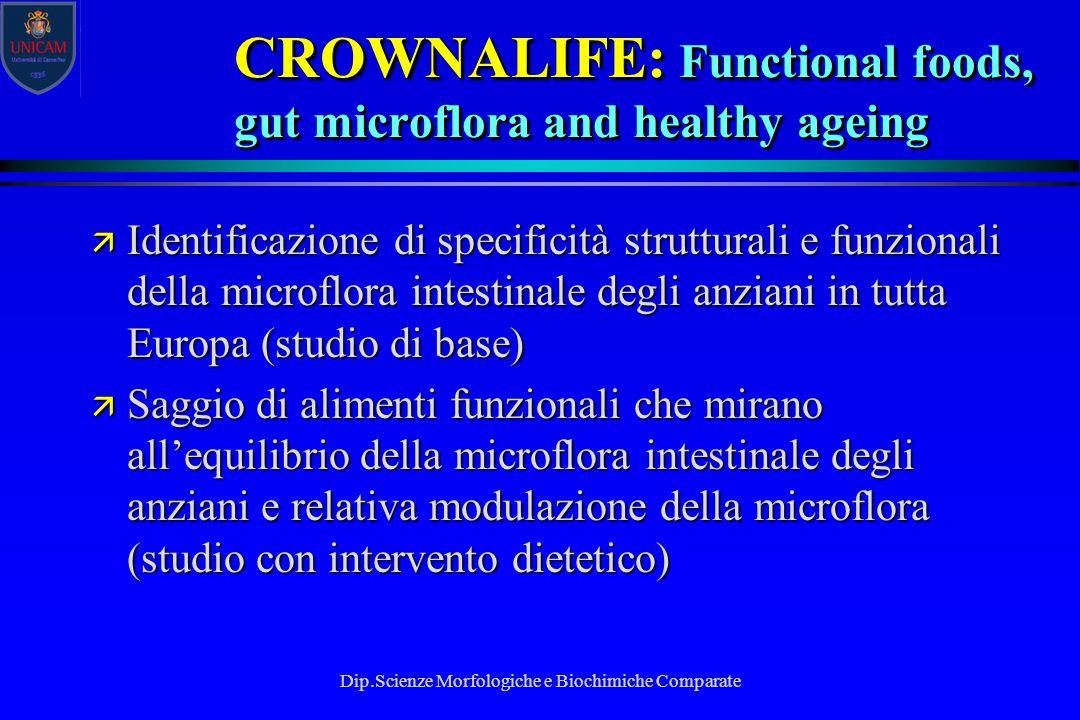Dip.Scienze Morfologiche e Biochimiche Comparate ä Identificazione di specificità strutturali e funzionali della microflora intestinale degli anziani