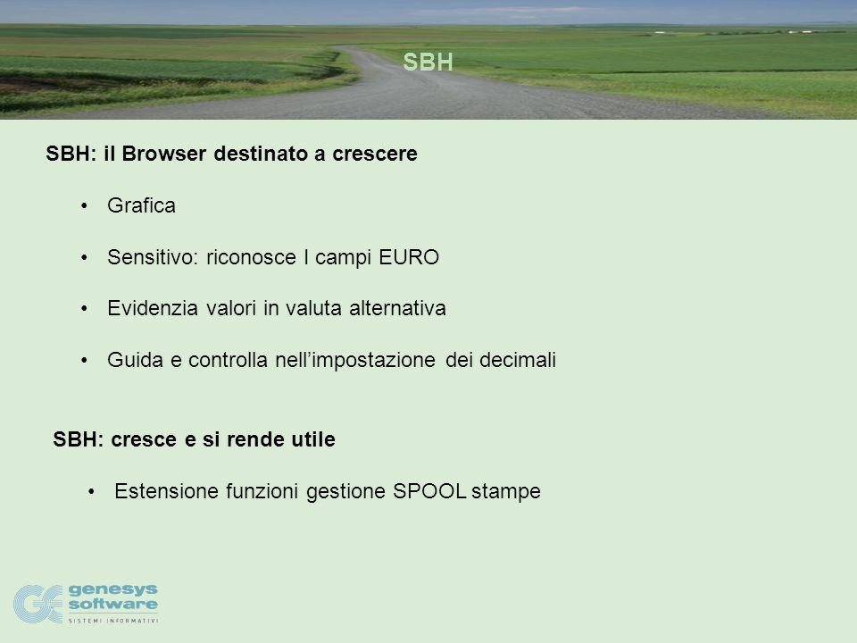 SIGEA Il Modulo DE9: lo specialista della migrazione all'EURO Diagnostica Migrazione Controlli e Verifiche