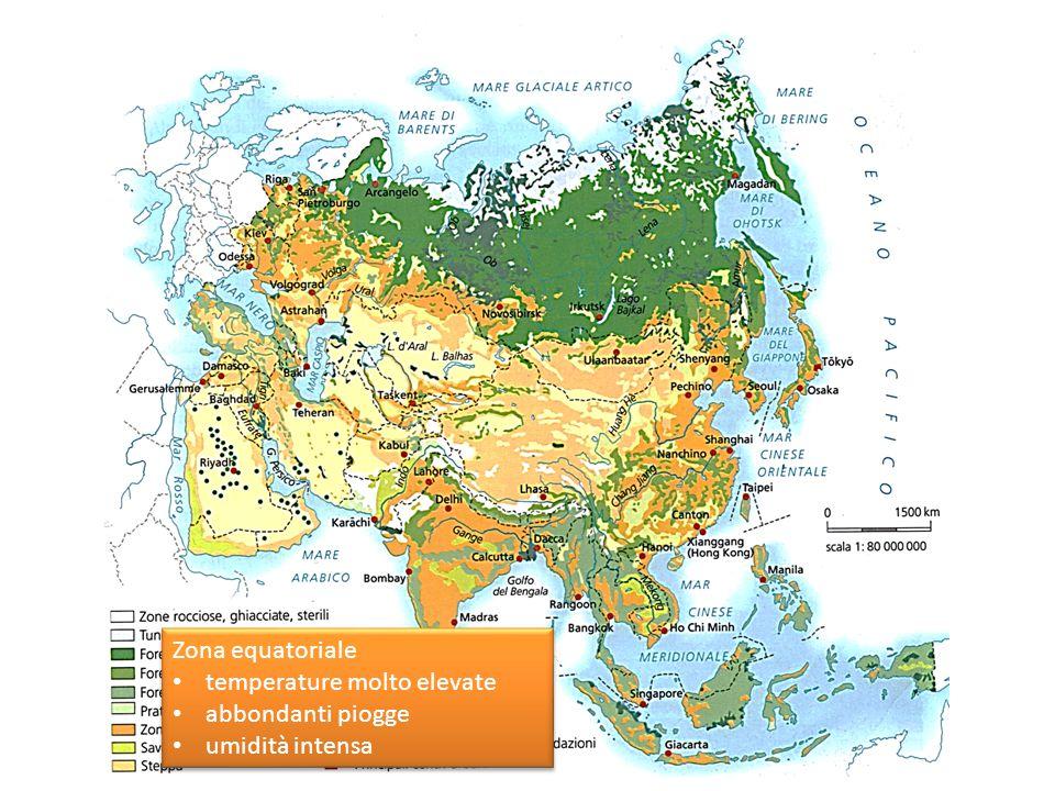 Zona equatoriale temperature molto elevate abbondanti piogge umidità intensa Zona equatoriale temperature molto elevate abbondanti piogge umidità intensa