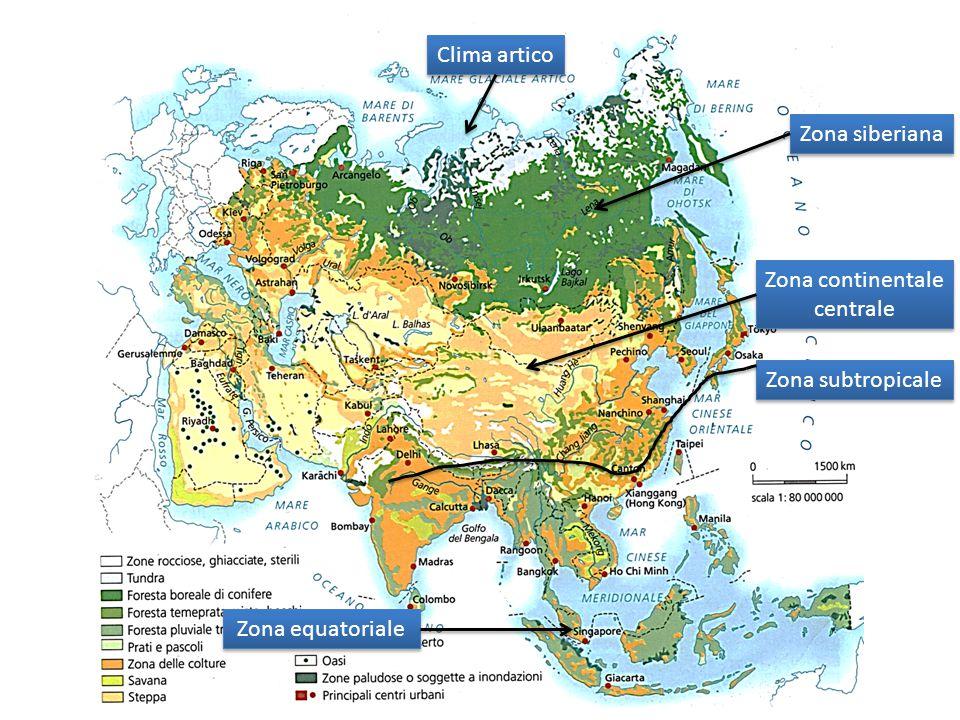 Clima artico Zona siberiana Zona continentale centrale Zona continentale centrale Zona subtropicale Zona equatoriale